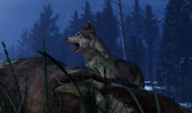 Kill wolves instead of people in Tannenberg's new Wolf Truce event