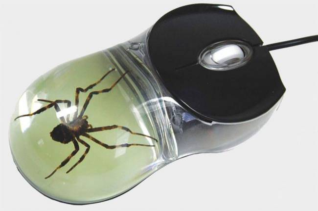 You can buy a mouse with a real spider inside just keep it far, far away from me