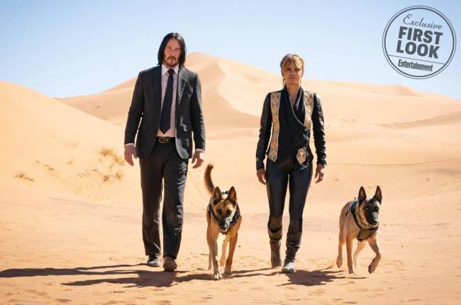 Latest John Wick Chapter 3 Image Introduces New Canine Cast