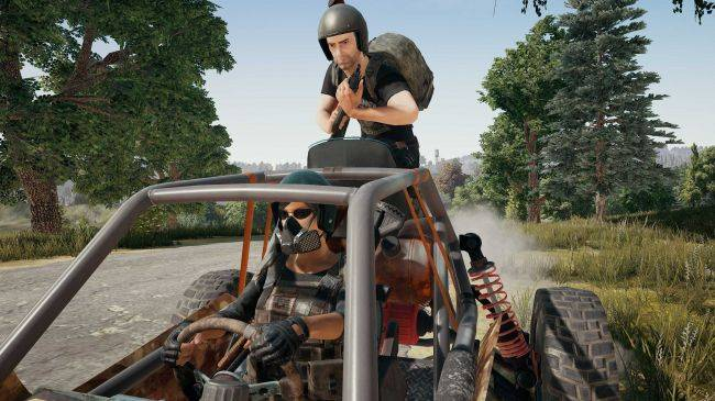 PUBG's Early Access chicken dinners could feed the population of Iceland for a year