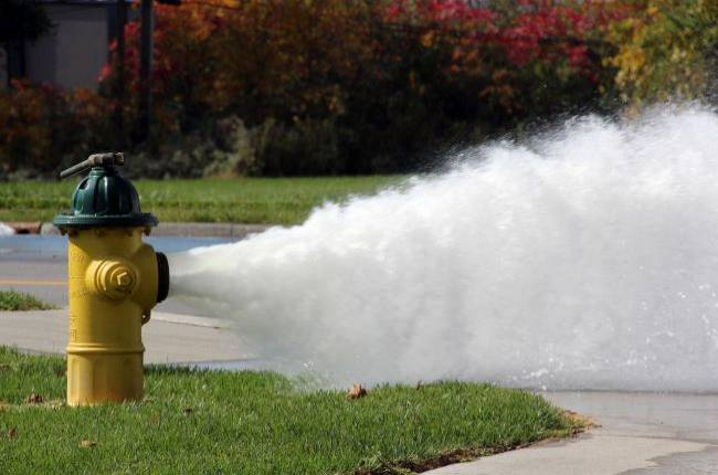 Steam delivered 15 billion gigabytes of data in 2018
