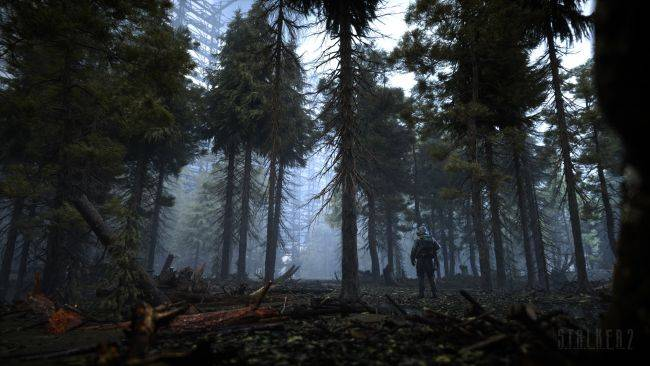 Here's a bit more detail about that in-engine Stalker 2 trailer