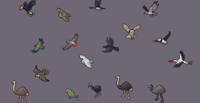 Look at these lovely Dwarf Fortress birds
