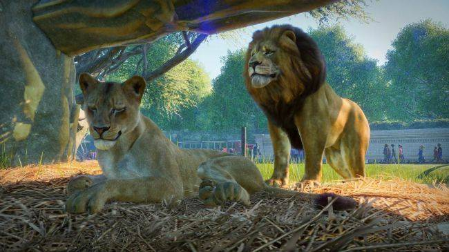 Planet Zoo release date and gameplay revealed at the PC Gaming Show