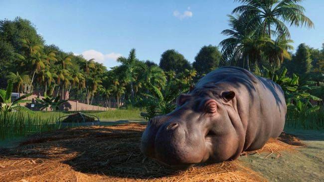 Watch 17 minutes of Planet Zoo gameplay from E3