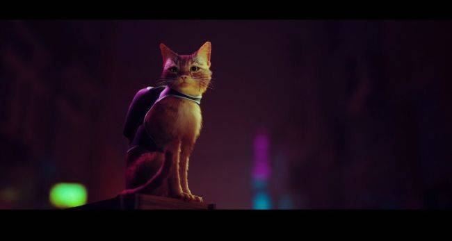 Stray is a stunning looking game about a cat in a world full of robots