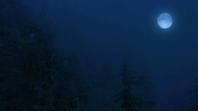 A Werewolf: The Apocalypse game is coming from 'slow games' studio Different Tales