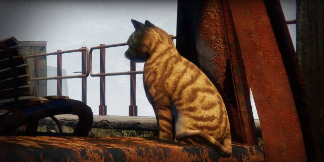 Please enjoy this nature documentary about the ordinary animals of Destiny 2