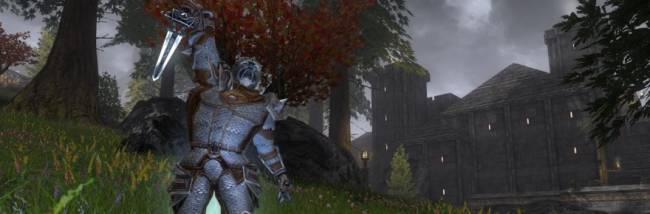 Darkfall: New Dawn launches on January 26, 2018