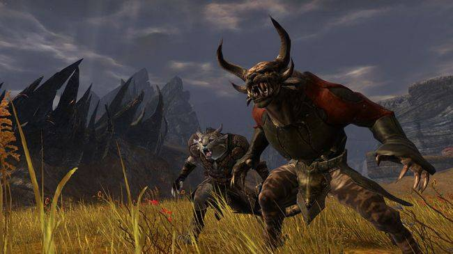 ArenaNet president leaves studio, was reportedly working on new Guild Wars game
