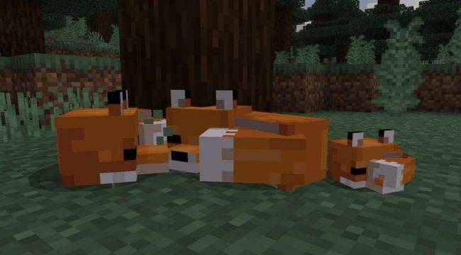 Minecraft now has foxes, brown mushrooms, and 'Suspicious Stew'
