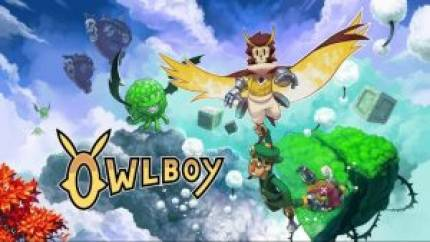 Owlboy: Limited Edition Tied Up in US Customs Delaying It